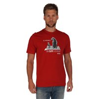 Regatta Algar Mens T Shirt Tikka