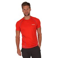 Regatta Luray Mens T Shirt Amber