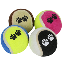 Regatta Fetch Ball Set 2019