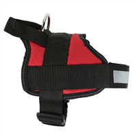 Regatta Reflective Dog Harness 2019