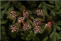 Festive 10 Red Twinkling Starburst Lights