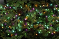 Festive 520 Glow-Worm Lights - Aurora