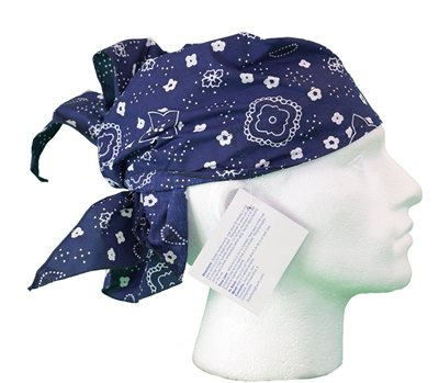 White Rock Blue Pattern Head Cooling Bandana