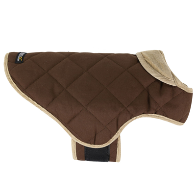 Regatta Chillguard Dog Coat 2019  - Click to view a larger image
