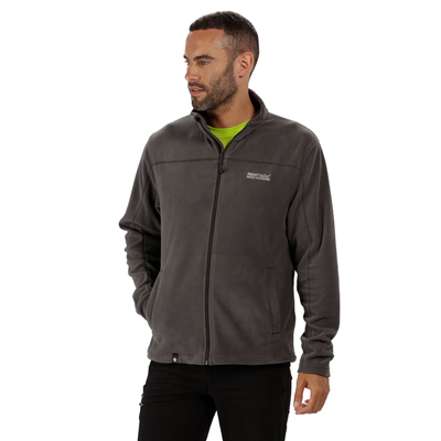 Regatta Fairview Mens Fleece Seal Grey/Iron  2018  - Click to view a larger image